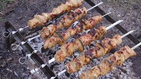 Salsichas suculentas saborosos que grelham sobre um fogo HD filme