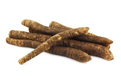 Salsify Stock Photography