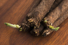 Salsify vegetables on wood Stock Photography