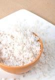 Salt. Kitchen salt in bowl, group of salt out of bowl stock image