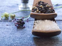 Free Salt And Pepper Stock Image - 1393921