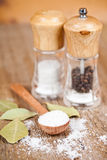 Salt And Pepper And Bay Leaves Stock Photos
