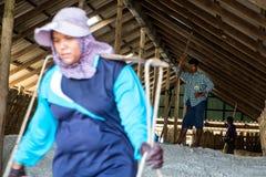 Salt arbetare Arkivbild