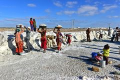 Salt arbetare i Indien Royaltyfri Fotografi