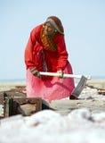 Salt arbeten, Sambhar salt lake, Rajasthan, Indien Royaltyfria Bilder