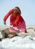 Salt arbeten, Sambhar salt lake, Rajasthan, Indien Arkivbild