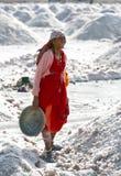 Salt arbeten, Sambhar salt lake, Rajasthan, Indien Royaltyfri Fotografi