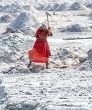 Salt arbeten, Sambhar salt lake, Rajasthan, Indien Arkivfoto