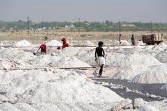Salt arbeten, Sambhar salt lake, Rajasthan, Indien Fotografering för Bildbyråer