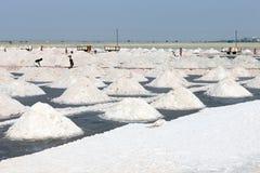 Salt arbeten, Sambhar salt lake, Rajasthan, Indien Royaltyfri Foto
