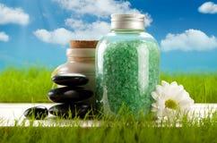 salt aromatherapy bad Royaltyfria Bilder