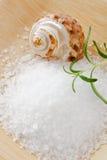 salt aromatiska rosmarinar skurar havet Arkivfoton