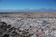 Salt in Atacama desert royalty free stock photo