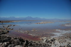 Salt in Atacama desert Stock Photo