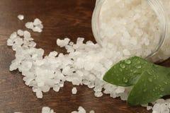 salt bad Fotografering för Bildbyråer