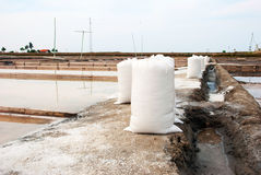 Salt in bags in evaporation ponds Stock Photo
