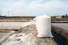 Salt in bags in evaporation ponds Stock Images