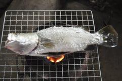 Salt bakade matlagning för havsbas Royaltyfria Bilder