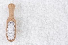 Salt bakgrund för hav med bästa sikt för träskopa arkivbild