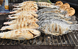Salt baking fish. Over a rack Royalty Free Stock Images