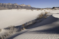 Salt Basin Dunes in Guadalupe Mountains National Park Royalty Free Stock Image