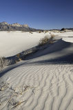 Salt Basin Dunes in Guadalupe Mountains National Park Royalty Free Stock Photography
