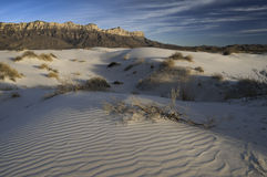 Salt Basin Dunes in Guadalupe Mountains National Park. Salt basin dunes are made of Gypsum grains which are bright-white dunes in the western part of Guadalupe Royalty Free Stock Photography