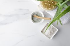 Salt for bath, clay for skin care, body brush and aloe vera on white pile of towels.Cncept of bath treatments royalty free stock images