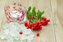 Salt bath with red berries. Stock Images