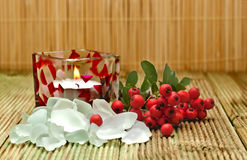 Salt bath with red berries. Stock Photo