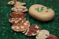 Bath salts and mottled shells royalty free stock photography