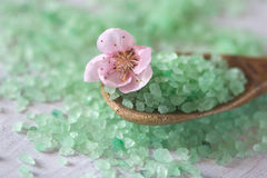 Salt bath on a wooden spoon and flower Stock Images
