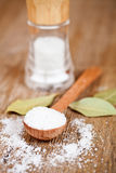 Salt and bay leaves Stock Photos