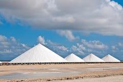 salt berg Royaltyfri Fotografi