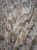 Salt berg, Cardona, Catalonia, Spanien Fotografering för Bildbyråer