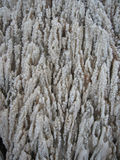 Salt berg, Cardona, Catalonia, Spanien Arkivfoto