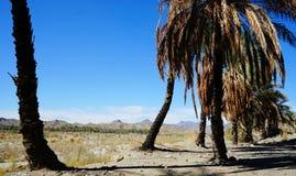 Salt berg i sout Iran, nära Persiska viken Arkivbilder