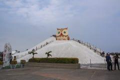 Salt berg- och ugglastaty i Qigu det salta berget, Taiwan Royaltyfri Foto