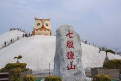 Salt berg- och ugglastaty i Qigu det salta berget, Taiwan Royaltyfria Bilder