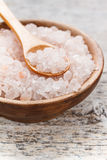 Salt in a bowl Royalty Free Stock Photo