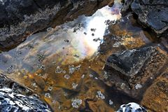 Salt brine pool royalty free stock image