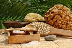 salt brunnsort för badborstelivstid fortfarande Arkivbilder