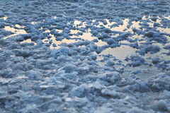 Dead Sea - Salt Bed Puddle Royalty Free Stock Photography