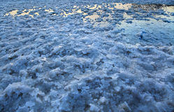 Dead Sea - Salt Bed Puddle Royalty Free Stock Photos
