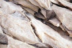 Salt cod. For sale at market Stock Images