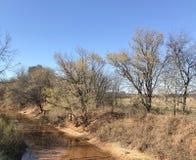Free Salt Creek Stock Images - 131874184