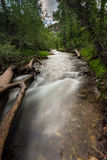 Salt Creek in Bear Canyon Utah Stock Photos