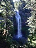Salt Creek Falls in Oregon. Salt Creek Falls waterfall in Oregon stock photo