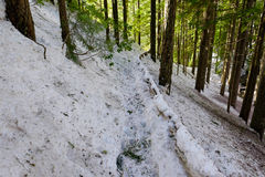 Salt Creek Snowshoe Hiking Trail Stock Photos