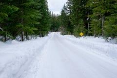 Salt Creek Snowshoe Hiking Trail. Hiking trail in the snow near Salt Creek Falls for snowshoe adventure Stock Photography
